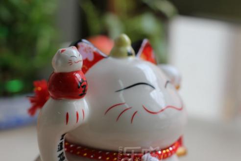 meo-than-tai-chieu-tai-tien-bao-sw356 (3)