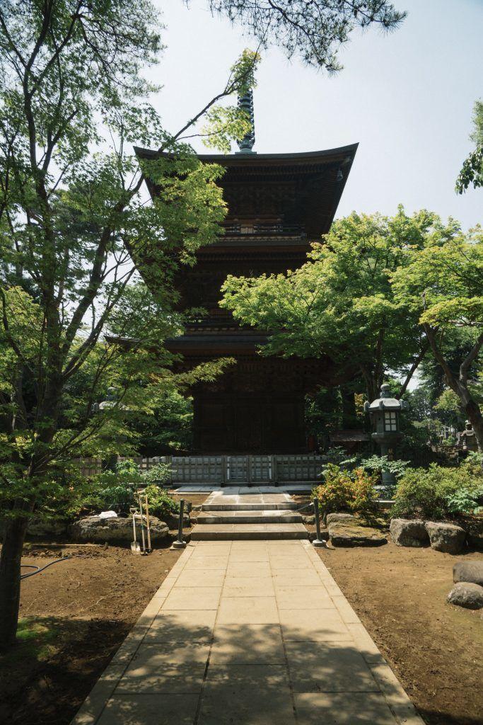 ảnh của đền gotokuji